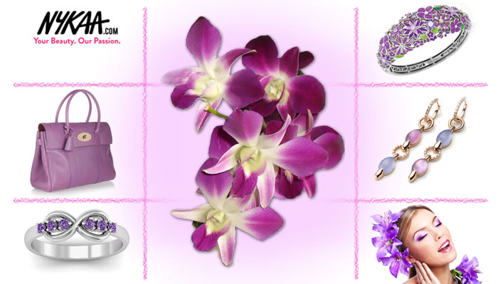 Bloom in the radiance of Orchids!