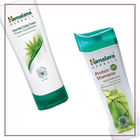 So which shampoo should you use?  2