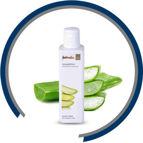 Natural Hair Care Ingredients – Aloe Vera