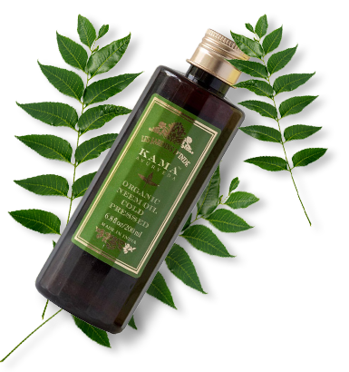 Which Oil Is Best For Hair - Neem
