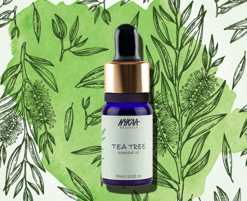 Top Picks From Nykaa's Tea Tree Treasures| 2