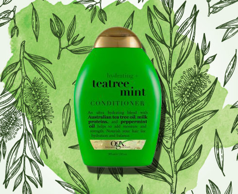 Top Picks From Nykaa's Tea Tree Treasures| 8