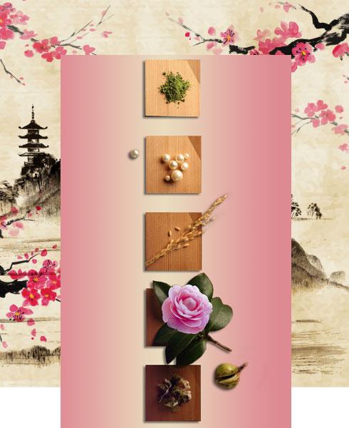 Japanese Beauty Secrets: Beauty Products for Skin Care | Nykaa's Beauty Book 2