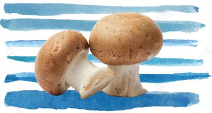Foods To Increase Immunity- Mushrooms