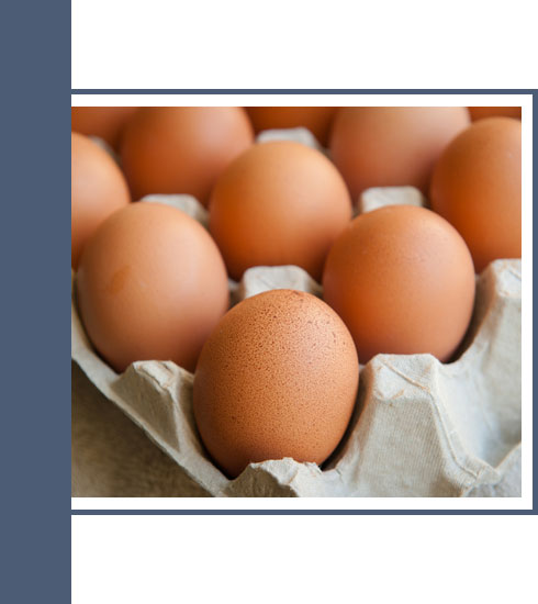 what to eat when you have a cold– eggs