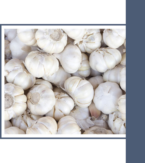 best foods to eat when you have a cold – garlic