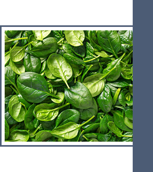 what to eat when you have a cold– spinach