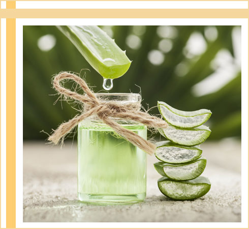 acne remedies- aloe vera