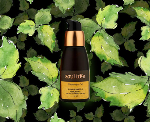 Tulsi, The Powerhouse Herb For Perfect Skin - 5