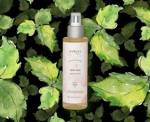Tulsi, The Powerhouse Herb For Perfect Skin - 6