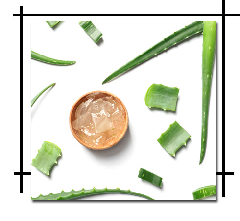 How to remove tan from face – Aloe Vera