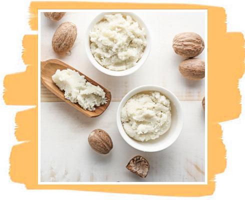 Ingredient in Shea Butter Soap– Shea Butter