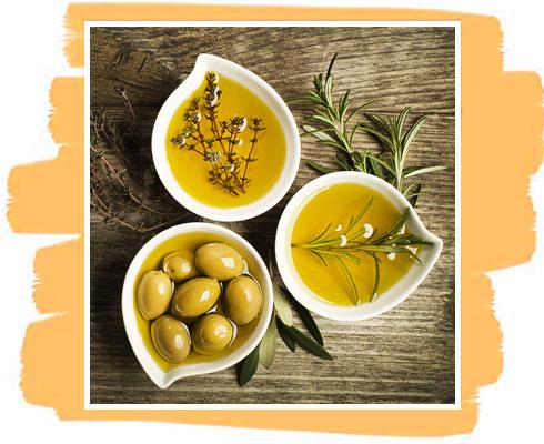 Ingredient in Olive Oil Soap– Olive Oil