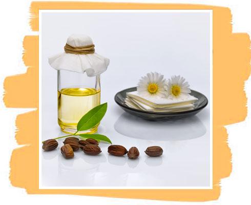 Ingredient in Jojoba Oil Soap– Jojoba Oil