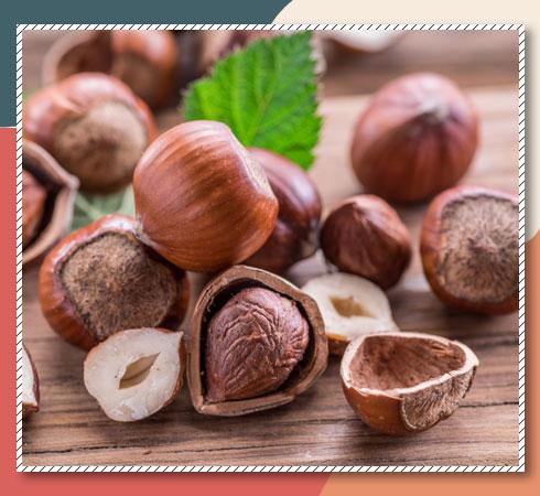 Vitamin E sources - hazelnut