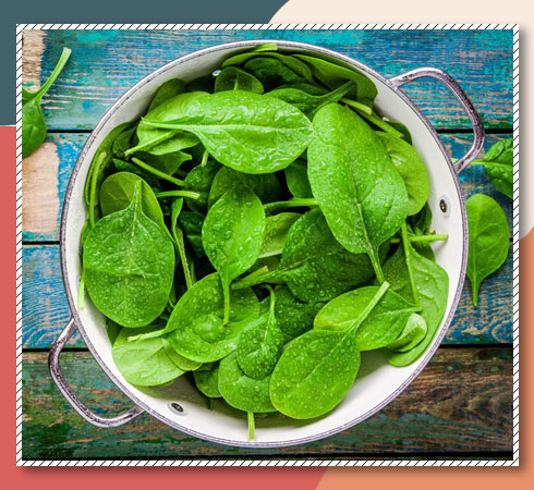 Vitamin A foods for skin - spinach