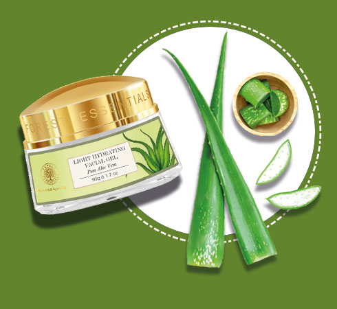 best natural products for skin – aloe vera