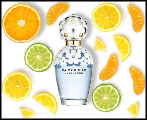 Back to Basics: How to pick the right fragrance - 5