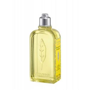 Buy L'Occitane Citrus Verbena Daily Use Shampoo - Nykaa