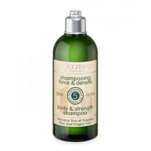 Buy Loccitane Aromachologie Force Shampoo  - Nykaa