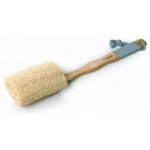 Buy Basicare loofah brush - Nykaa