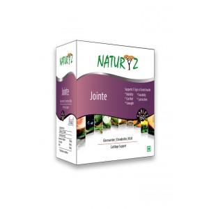 Buy Naturyz Jointe - 60 Capsules - Nykaa