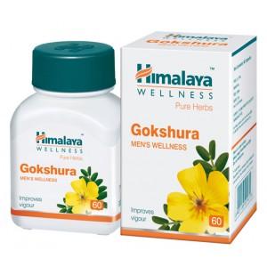 Buy Himalaya Wellness Gokshura 60 Tablets - Nykaa