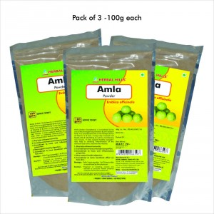 Buy Herbal Hills Amla Powder - Nykaa