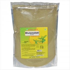 Buy Herbal Hills Bhuiamalaki Powder - Nykaa