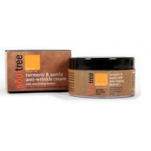 Buy SoulTree Turmeric & Aamla Anti-Wrinkle Cream with Skin Firming Brahmi - Nykaa