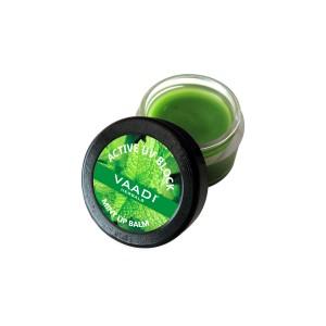 Buy Vaadi Herbals Lip Balm - Mint - Nykaa