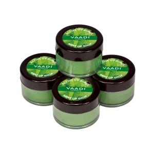 Buy Vaadi Herbals Value Pack Of 4 Lip Balm - Mint - Nykaa