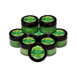 Buy Vaadi Herbals Super Value Pack Of 8 Lip Balm - Mint - Nykaa