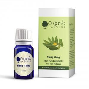 Buy Organic Harvest Ylang Ylang - Nykaa