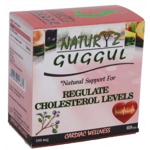 Buy Naturyz Cardiofit (Guggul) N60 - Nykaa