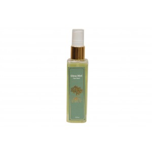 Buy Roots & Above Ayurvedic Citrus Mint Face Wash  - Nykaa