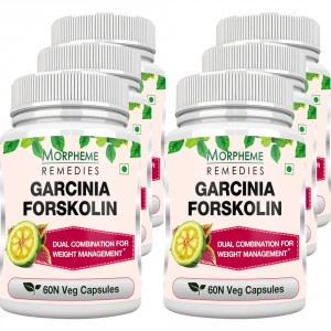 Buy Morpheme Remedies Garcinia Forskolin 500mg Extract - 6 Bottles - Nykaa
