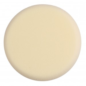 Buy Pro Arte Makeup Sponge Wet And Dry Round - Nykaa