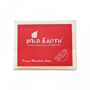 Buy Wild Earth Orange Mandarin Soap - Nykaa