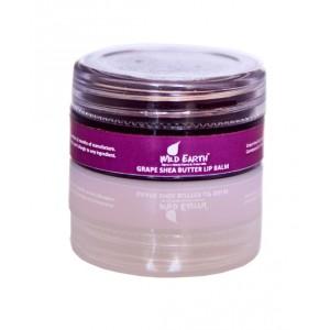 Buy Wild Earth Grape Shea Butter Lip Balm - Nykaa
