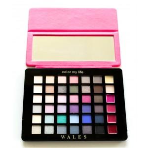 Buy Make Up For Life Wales Eye Shadow Makeup Kit - Nykaa
