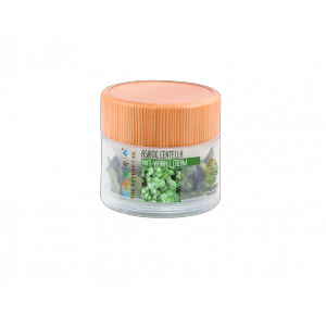Buy The Nature's Co. Asiatic Centella Anti Wrinkle Cream - Nykaa