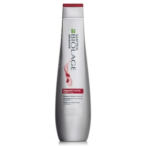 Buy Matrix Biolage Advance Repairinside Repairing Shampoo - Nykaa
