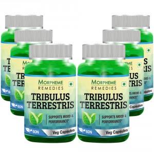 Buy Morpheme Tribulus Terrestris Caps 500mg Extract - 60 Veg Caps (6 Bottles) - Nykaa