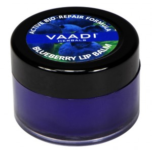 Buy Vaadi Herbals Lip Balm - Blueberry - Nykaa