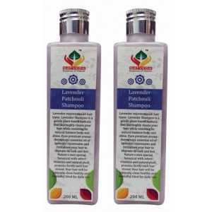 Buy Satveda Lavender Patchouli Shampoo - Pack Of 2 - Nykaa