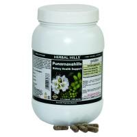 Herbal Hills Punarnavahills Powder