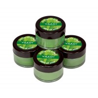 Vaadi Herbals Value Pack Of 4 Lip Balm - Mint