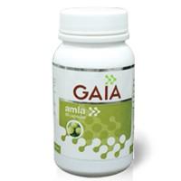 Gaia Amla