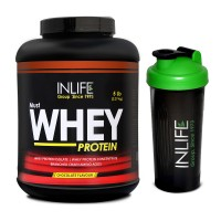 INLIFE Whey Protein Powder 5 lbs (Chocolate Flavor) Body Building Supplement